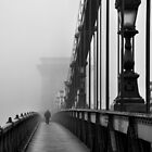 Chain Bridge by erkaphoto