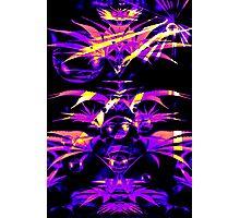 Purple Fazed  Photographic Print