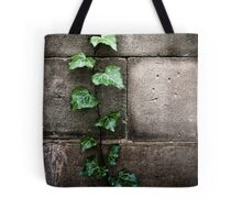 climbing the wall Tote Bag