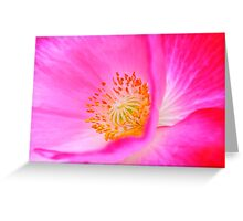 Floral Glory Greeting Card