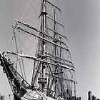 USCGC Eagle by John Schneider