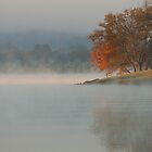 tranquil by dc witmer