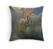 """""""Illuminated Cottonwood"""" Throw Pillow"""