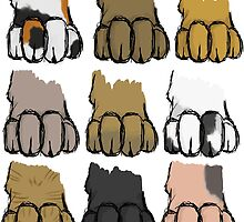 Paws by Jodiiyoung