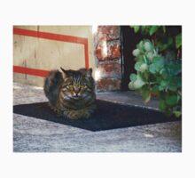 Cat at the door Baby Tee