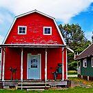 I Want To Be A Barn When I Grow Up by Tamara Valjean