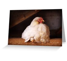 Hetty with chick Greeting Card
