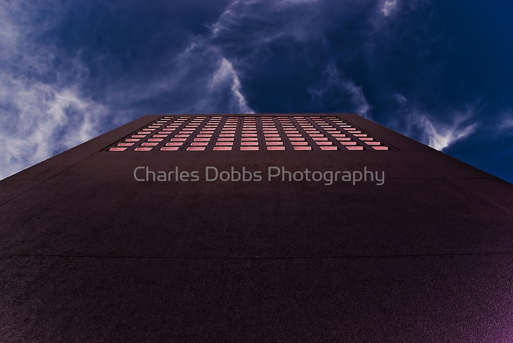 The Diving Board to Oblivion by Charles Dobbs Photography