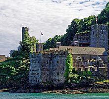Dartmouth Castle #2, Devon, England by atomov