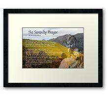 Little girl praying Framed Print