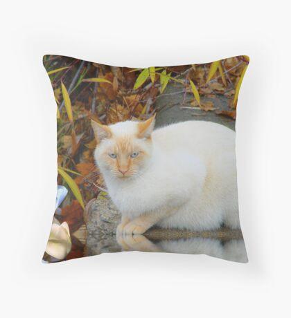 Mr. Serious Throw Pillow