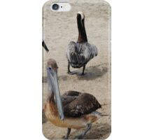Pelican Party iPhone Case/Skin