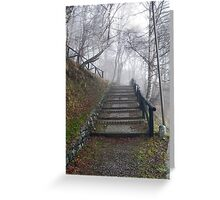 Forest stairs Greeting Card