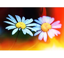 Flowers and Light Leak Texture Photographic Print