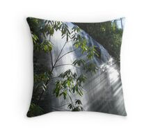 Sun Water Throw Pillow