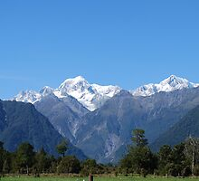 Glaciers of New Zealand by ejacent