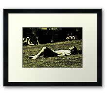 City heat #2 Framed Print