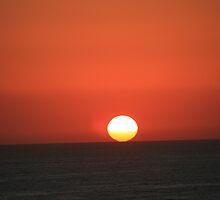 Sea of Cortez by David Rowan