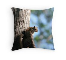 Camp Ground Visitor Throw Pillow