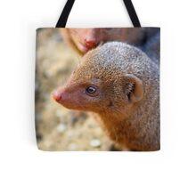 Mongoose close up ! Tote Bag