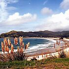 Medlands Beach, Great Barrier Island..........! by Roy  Massicks