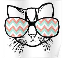Funk Cat Poster