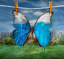 Butterfly - Morpho - I hate it when the colors run by Mike  Savad