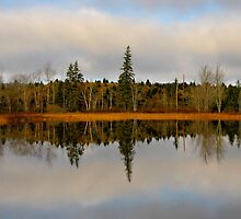 Looking Glass Lake by Kathleen   Sartoris