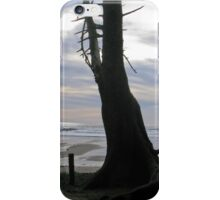 elements 3 iPhone Case/Skin