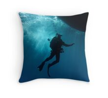 Back in to the Light Throw Pillow