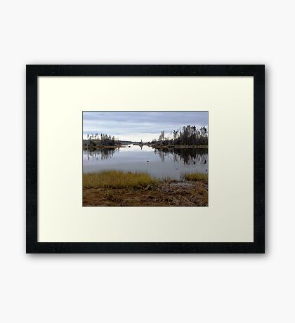 It's Mine, All Mine.... Framed Print