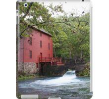 Alley Mill iPad Case/Skin