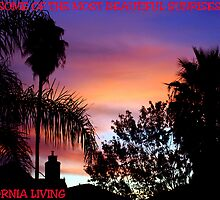 CALIFORNIA LIVING by SMOKEYDOGSOCKS
