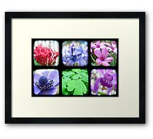 My Garden Through the Viewfinder Framed Print
