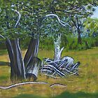 Panoramic scene from the Fauna Park, Doran Road, Bunyip by Samuel Ruth