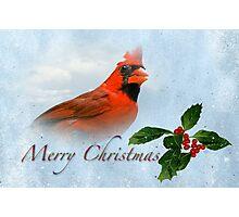 Merry Christmas Cardinal Photographic Print