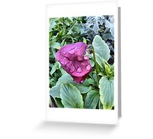 Capital Flower ~ 6 Greeting Card
