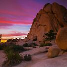 Joshua Tree Sunset  Intersection Rocks by photosbyflood