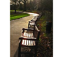 Park benches, wet afternoon Photographic Print