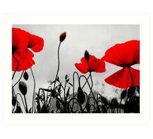 Red Poppies - Glasgow Scotland UK Europe Art Print