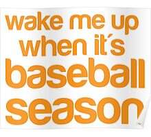 Wake me up when it's BASEBALL season Poster