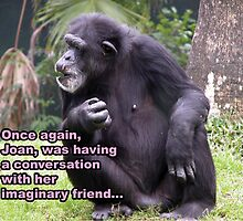 Chimp Talk by Marie Terry