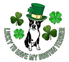 Lucky to have my Boston Terrier by Bostonterrierig
