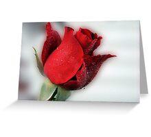 Red Rose Opening Greeting Card