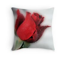 Red Rose Opening Throw Pillow