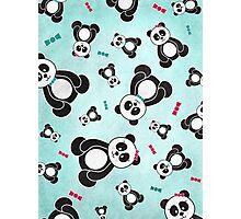 Panda Freefall Photographic Print