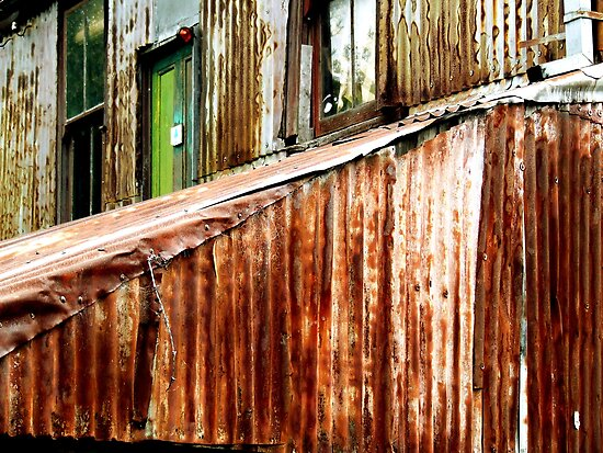 Rusty out back by Paul Todd
