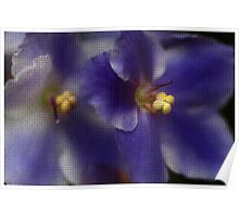 Mosaic African Violet Poster