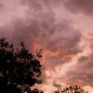 Fire In The Sky by Gethin