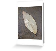 neovibe.us | fortitude Greeting Card